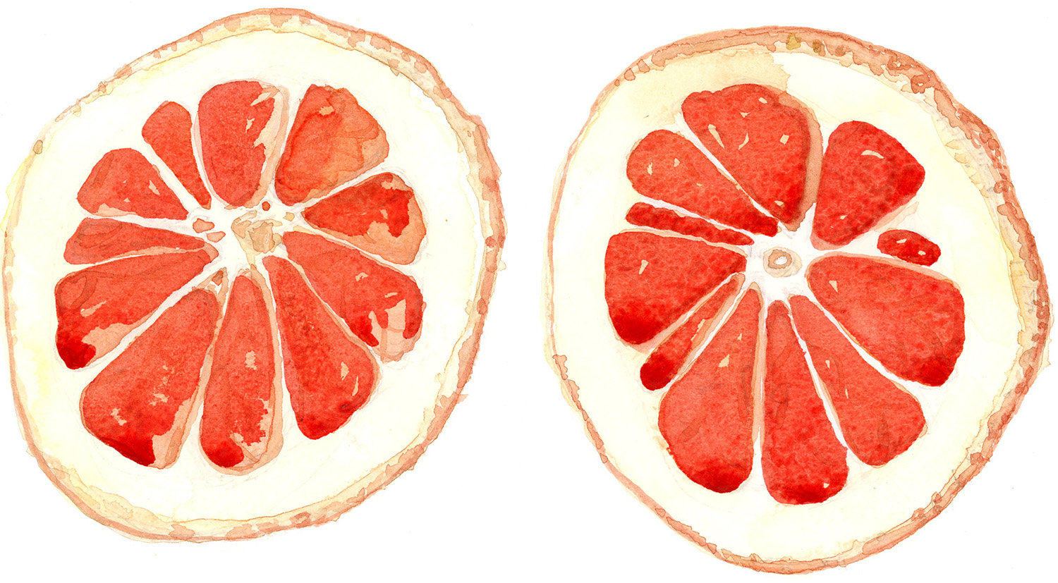 Pink Grapefruit Slices